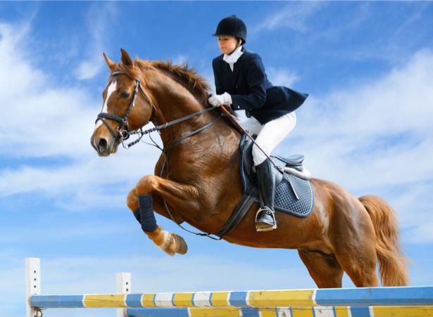 Фотообои жокей в прыжке на лошади (sport-0000061)