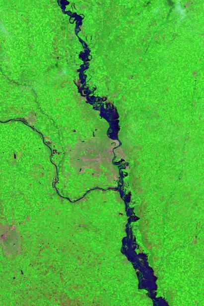 Фотообои 3д рассечение зеленого (terra-00019)