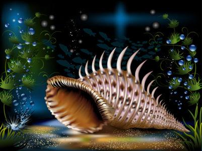 Фотообои для ванны морская раковина (underwater-world-00191)