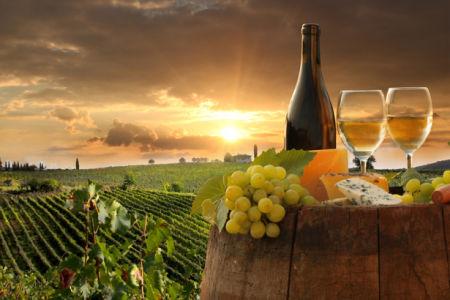 Фотообои кухня вино виноградное поле (food-0000228)