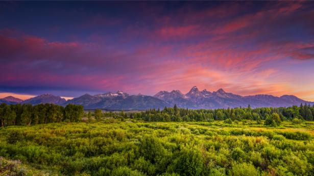 Фотообои пейзаж с фиолетовым небом (nature-0000775)