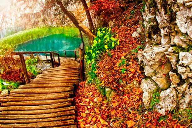 Фотообои виды природы мост на озере (nature-00059)