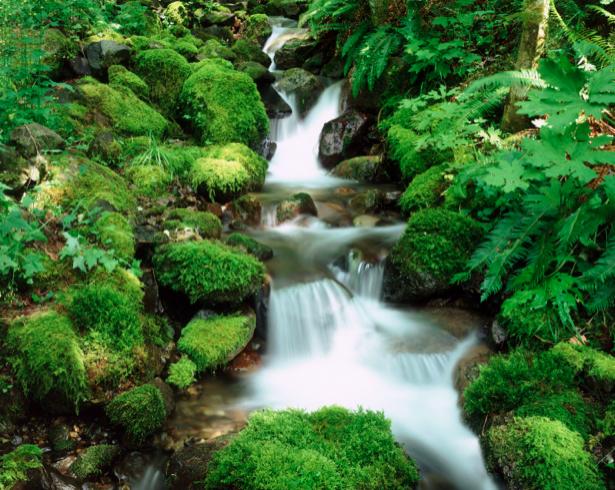 Фотообои природа водопад камни (nature-00383)