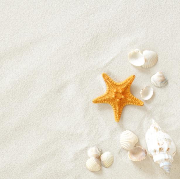 Фотообои ракушки на белом песке (underwater-world-00085)