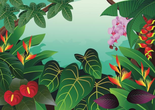 Фотошторы тропический лес (children-curtain-00021)