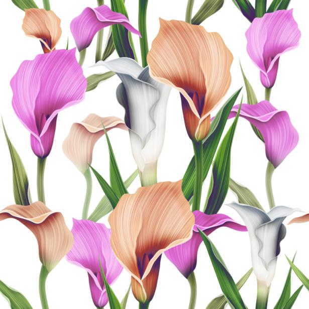 Цветочные фото обои лилии (flowers-0000676)