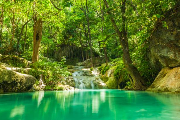 водопад фотообои лес (nature-0000720)
