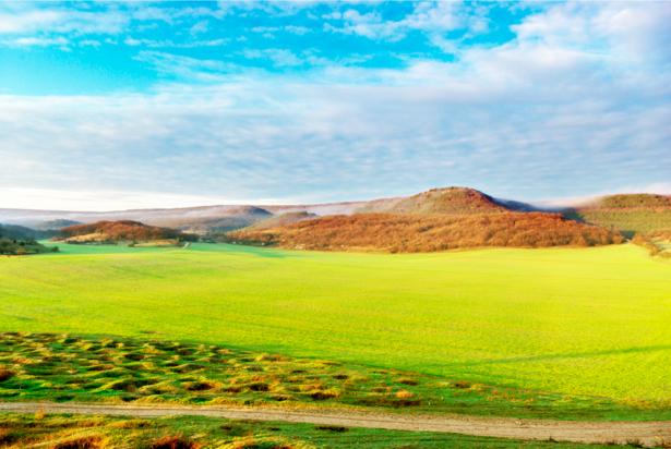 Фотообои горы зеленое поле небо (nature-00185)
