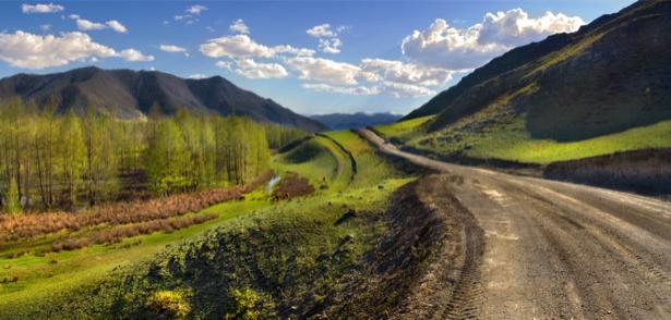 Фотообои пейзаж дорога лес горы (nature-00468)