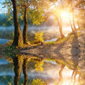 Фотошторы на берегу озера (bedroom-curtain-00009)