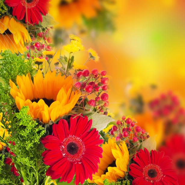 Фото обои букет разных цветов (flowers-0000432)
