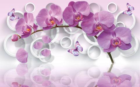 Фотообои Ветка орхидеи (flowers-808)