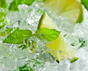 Фотообои на кухне лайм во льду (food-0000303)