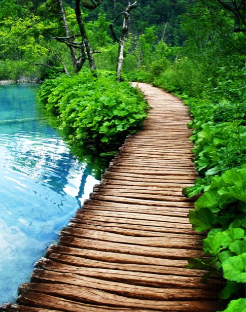 Фотообои деревянный мост на реке (nature-0000698)