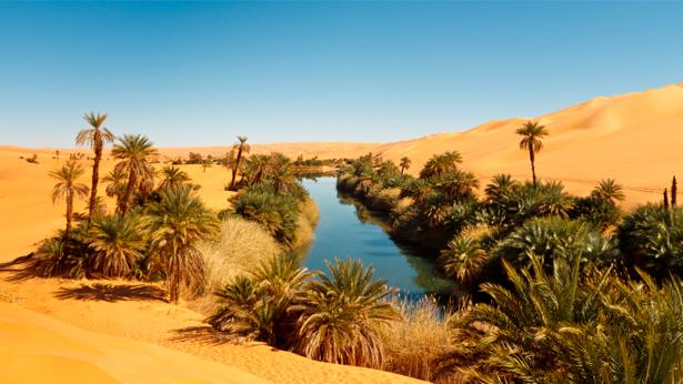Фотообои пустыня, река (nature-00301)