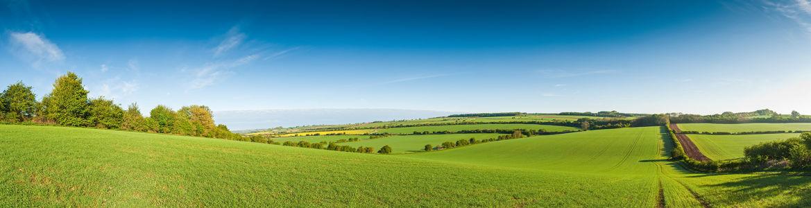 Фотообои загородная природа (panorama-45)
