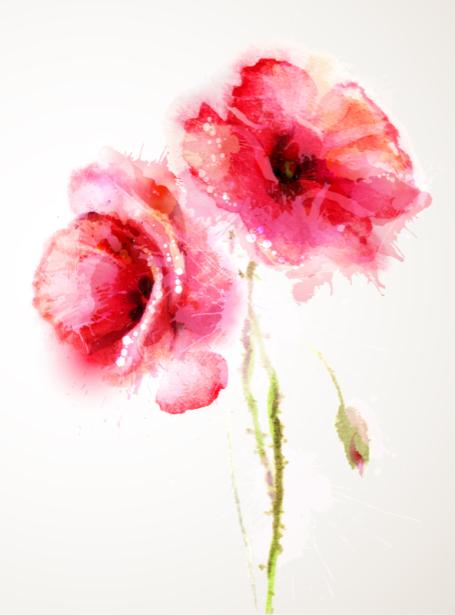 Комнатные обои Маки (flowers-0000710)