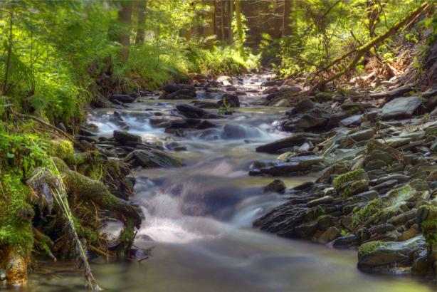 Фотообои водопад в лесу (nature-0000780)