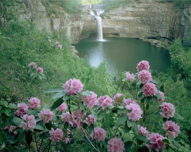Фотообои виды природы горный водопад (nature-00370)