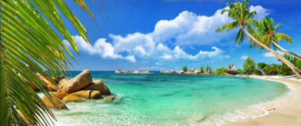 Фотообои горизонтальные море пальмы (sea-0000186)