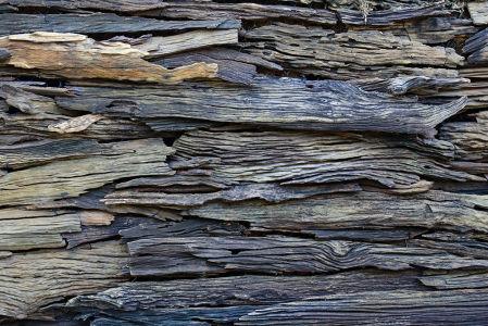 Фотообои старое дерево (background-386)