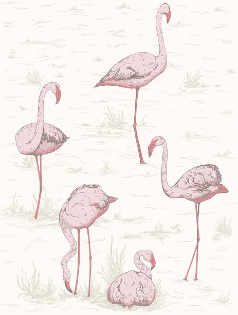 Фотообои Фламинго (bedroom-4)