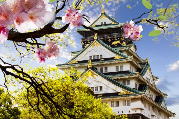 Фотообои Замок Осака и цветы (city-0001411)
