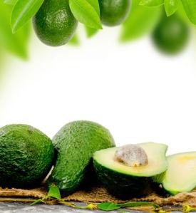 Фотошторы с авокадо (kc17)