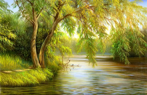 Фотообои над рекой дерево (nature-00535)