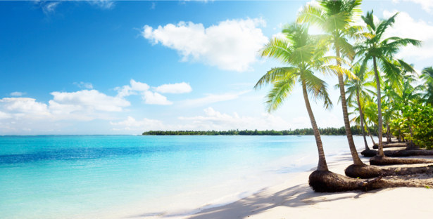 Фотообои белый песок на морском пляже (sea-0000185)