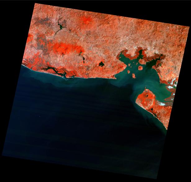 Фотообои 3д красное на черном (terra-00080)