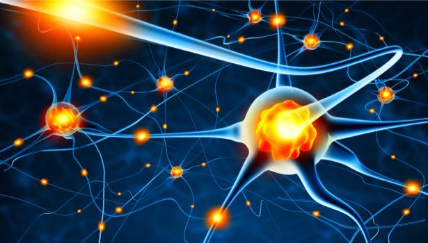 Фотообои нервные клетки нейрон (background-0000267)