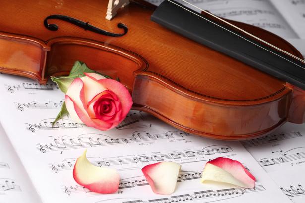 Фото обои Роза и скрипка (flowers-0000164)