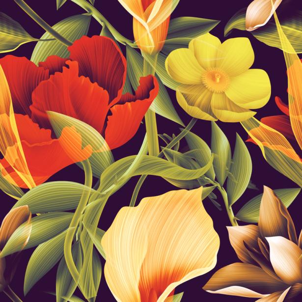 Фото обои цветы на черном фоне (flowers-0000678)