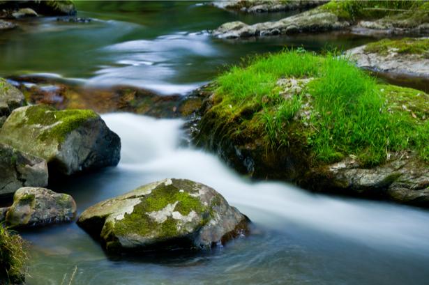 Фотообои трава водопад камни (nature-0000685)