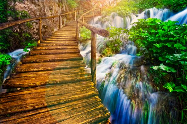 Фотообои на реке мост лес (nature-0000697)