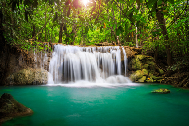 Фотообои водопад лес фото (nature-0000731)