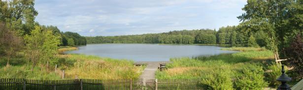 Фотообои лесная панорама поле река (panorama_0000009)