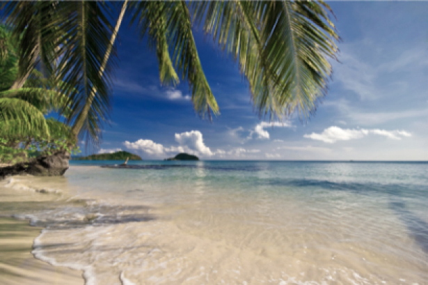Фотообои баунти море берег пальмы (sea-0000144)