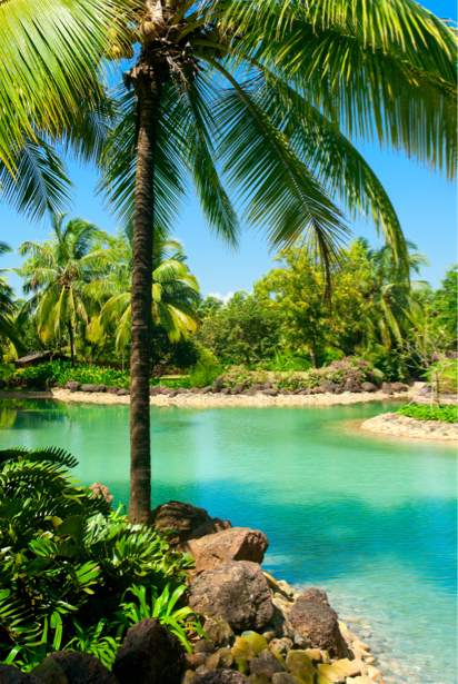 Фотообои море берег пальмы тропик (sea-0000254)