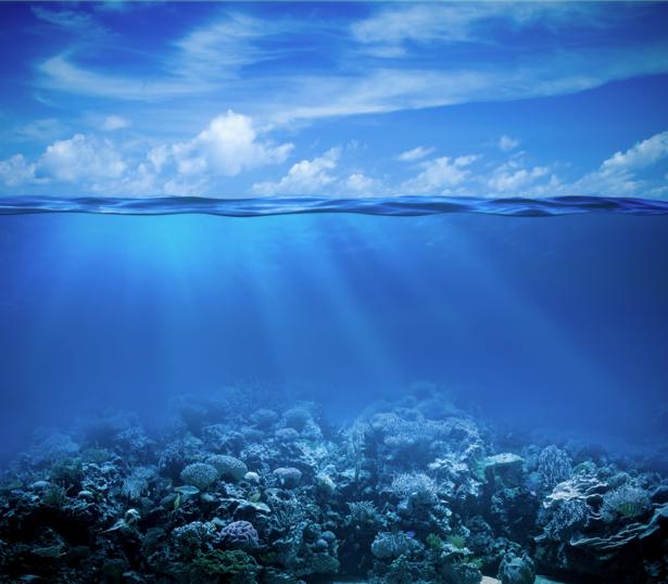 Фотообои море под водой и над водой (sea-0000296)