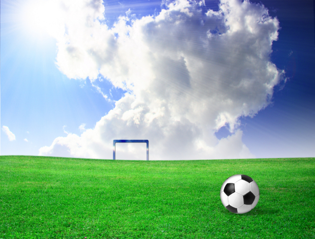 Фотообои футбольное поле (sport-0000031)