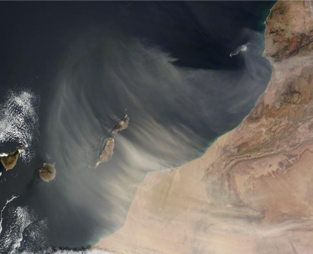 Фотообои 3д пустыня и окиан (terra-00078)