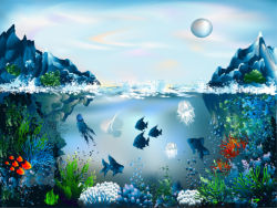 underwater-world-00189