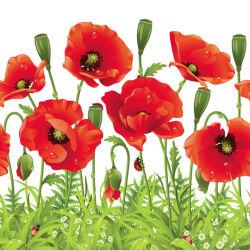 flowers-0000596