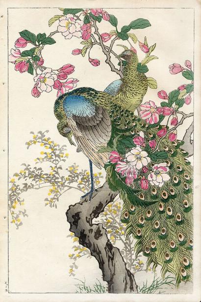картина графика птицы (japanese-chart-9)