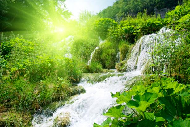 Фотообои с природой водопад утро (nature-00139)
