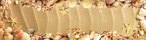 Фотообои для ванной морские ракушки (underwater-world-00072)