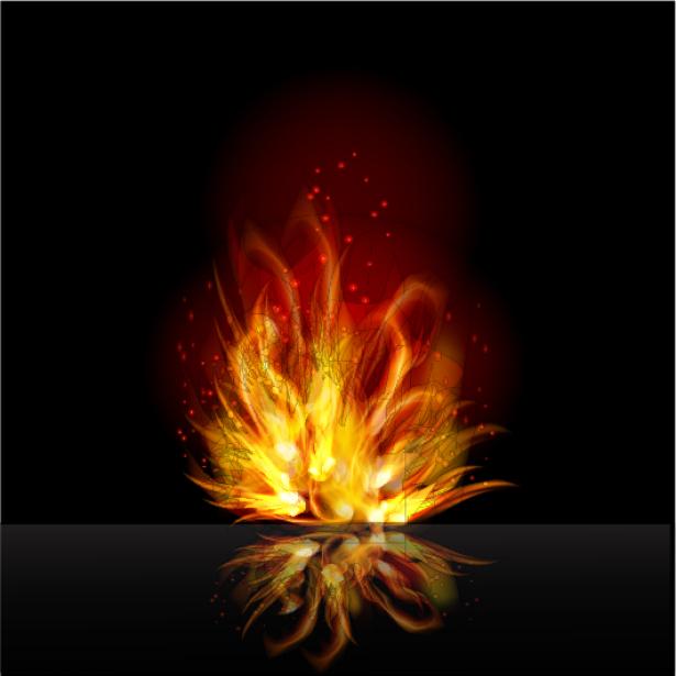 Фотообои пламя костра цветок (fantasy-0000100)