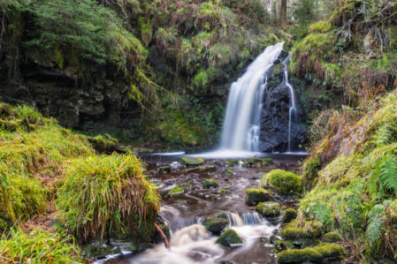 Фотообои водопад в лесу (nature-0000861)
